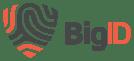 Big ID - logo - transparent background
